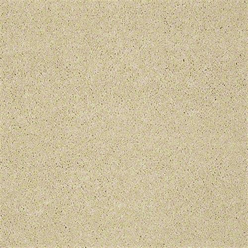 Cooper in Gold Sunset - Carpet by Shaw Flooring