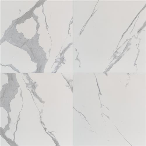 Eden in Statuary  24x24 Polished - Tile by MSI Stone