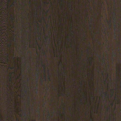 Albright Oak 3.25 in Coffee Bean - Hardwood by Shaw Flooring