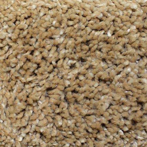 Aurora in Sandbar - Carpet by Phenix Flooring