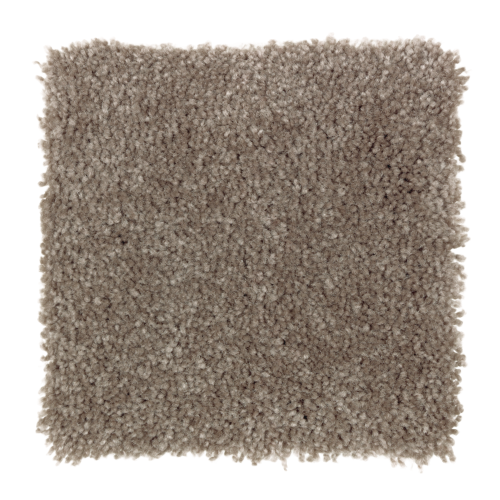 Delightful Cheer in Twig - Carpet by Mohawk Flooring