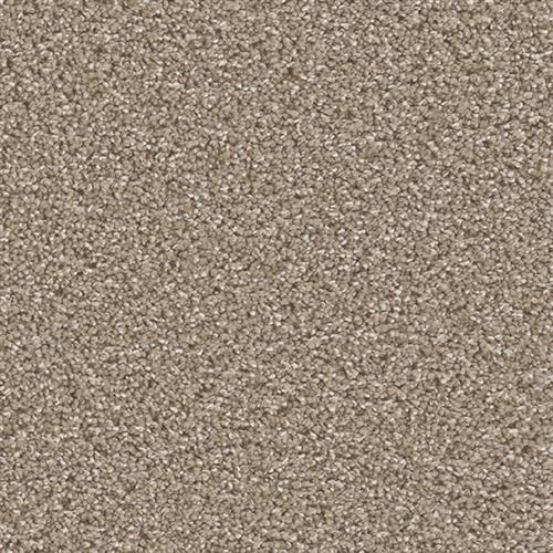 Can't Miss in Acorn - Carpet by Engineered Floors