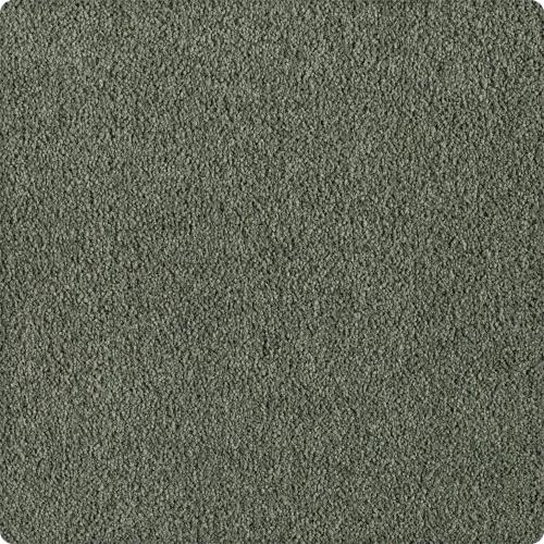 Design Your Dream in Pine Grove - Carpet by Mohawk Flooring