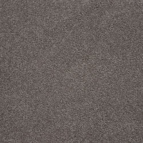 Memorable View in Hearthstone - Carpet by Mohawk Flooring