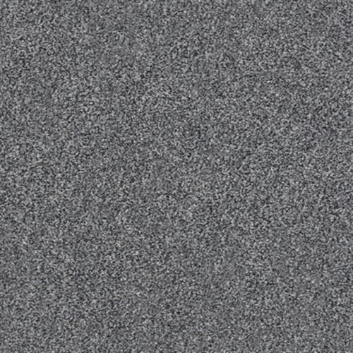 Room Scene of Xz149 Net - Carpet by Shaw Flooring