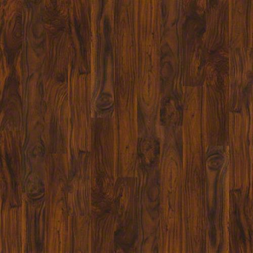 Torrington in Warm Acacia - Laminate by Shaw Flooring