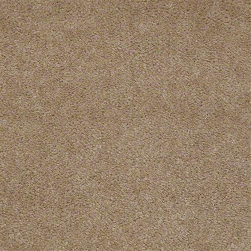 Room Scene of Cedar Creek - Carpet by Shaw Flooring