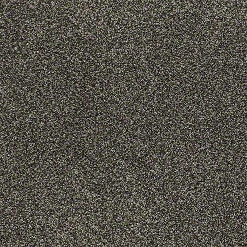 Room Scene of Imagine This II - Carpet by Shaw Flooring
