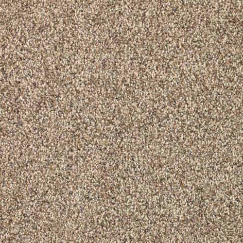 Earthen Tones in Harvest Moon - Carpet by Mohawk Flooring
