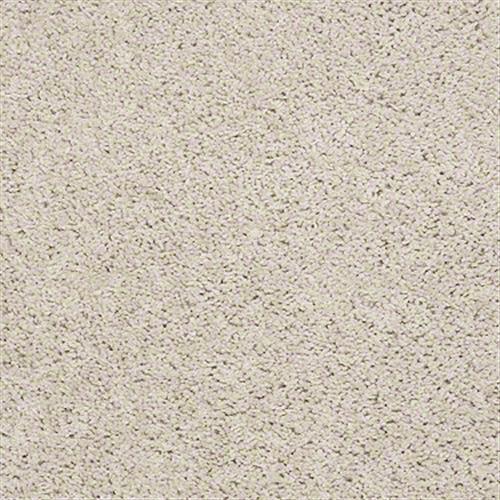 Room Scene of Cardinal - Carpet by Shaw Flooring