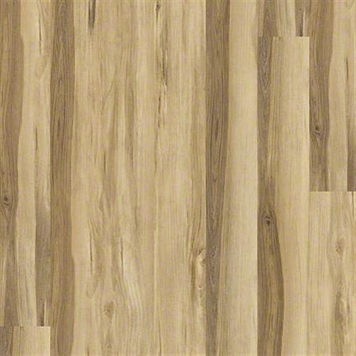 Underthecanopysd in Castagna - Vinyl by Shaw Flooring
