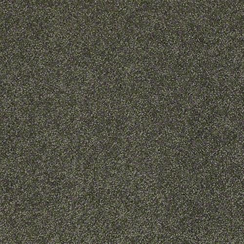 Room Scene of Fabuloso - Carpet by Shaw Flooring