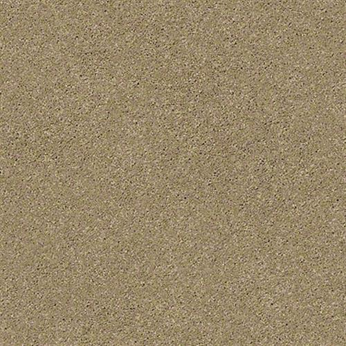 Room Scene of Free Form - Carpet by Shaw Flooring