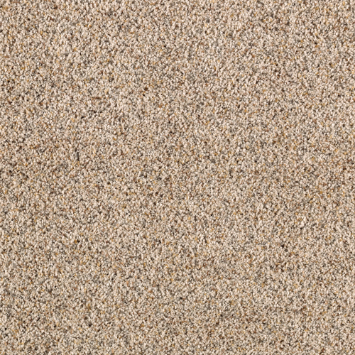 Amazing Approach in Oyster Shell - Carpet by Mohawk Flooring