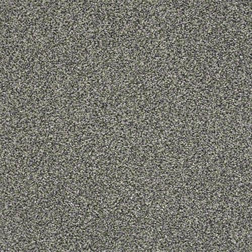 Room Scene of The Bark Side II - Carpet by Shaw Flooring