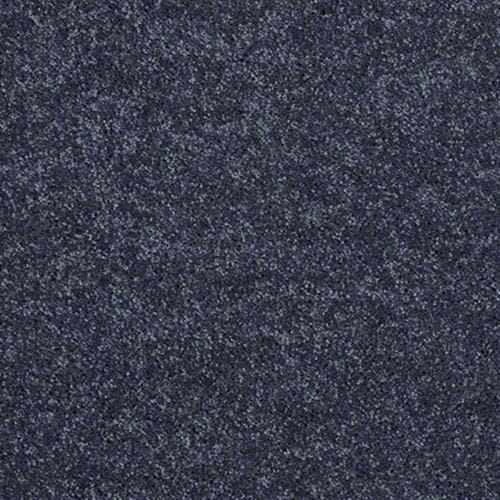 Room Scene of Extraordinary Touch I - Carpet by Shaw Flooring
