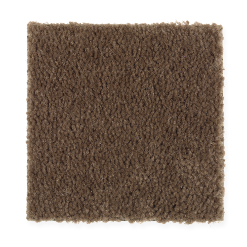 Instant Classic in Pumpernickel - Carpet by Mohawk Flooring