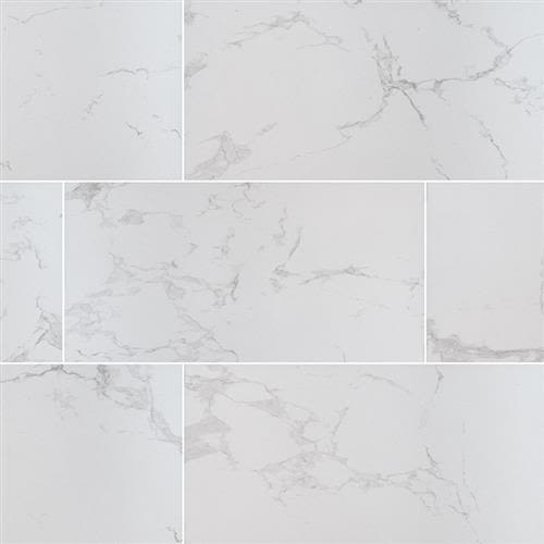 Praia in Carrara   24x48 Polished - Tile by MSI Stone