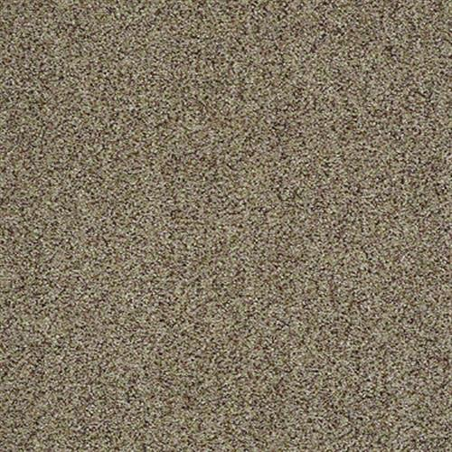 Room Scene of Premier (a) - Carpet by Shaw Flooring