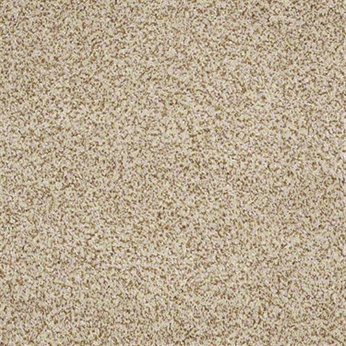 Room Scene of Venecia - Carpet by Shaw Flooring