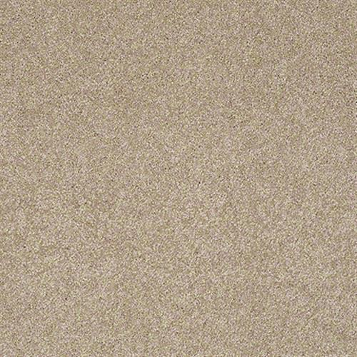 Room Scene of Gold Texture - Carpet by Shaw Flooring