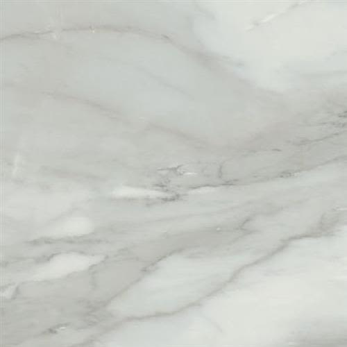 Bardiglio in Grigio Polished   16x32 - Tile by Happy Floors