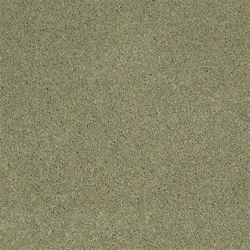 Room Scene of Quiet Comfort I - Carpet by Shaw Flooring