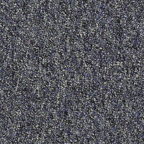 Room Scene of Camden Harbor II Epbl - Carpet by Shaw Flooring