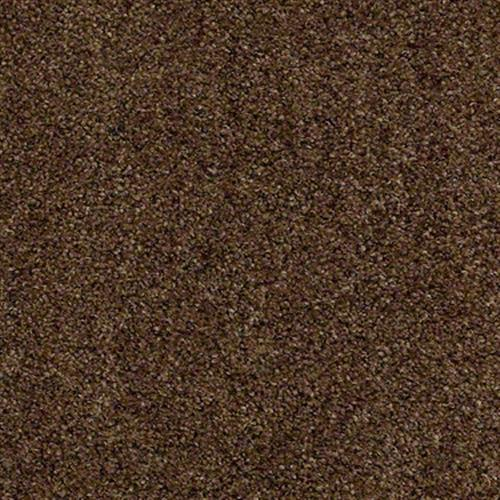 Room Scene of The Gardens - Carpet by Shaw Flooring