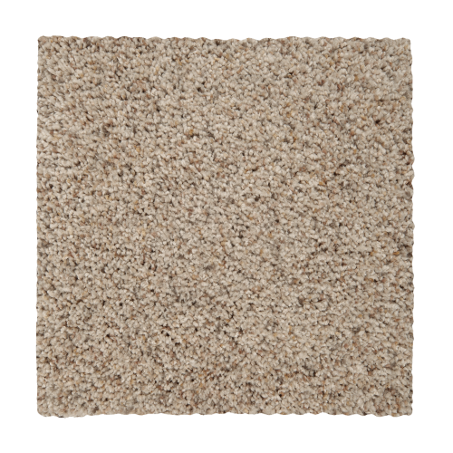 Calming State in Harmony - Carpet by Mohawk Flooring