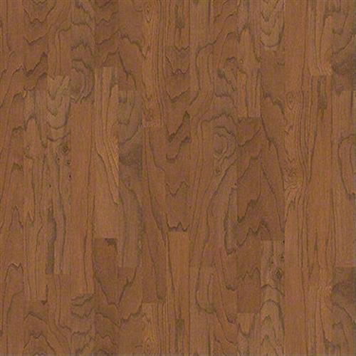 Cameron 3 1/4 in Gunstock - Hardwood by Shaw Flooring