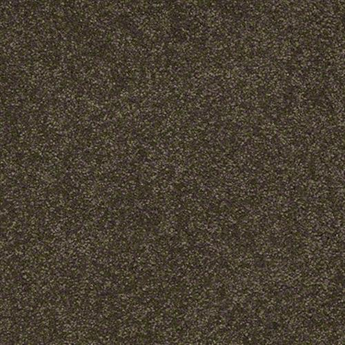 Room Scene of Sandy Hollow I 15' - Carpet by Shaw Flooring