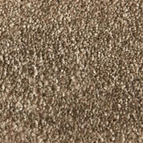Atelier Marquee   Velveteen in Mink - Carpet by Stanton