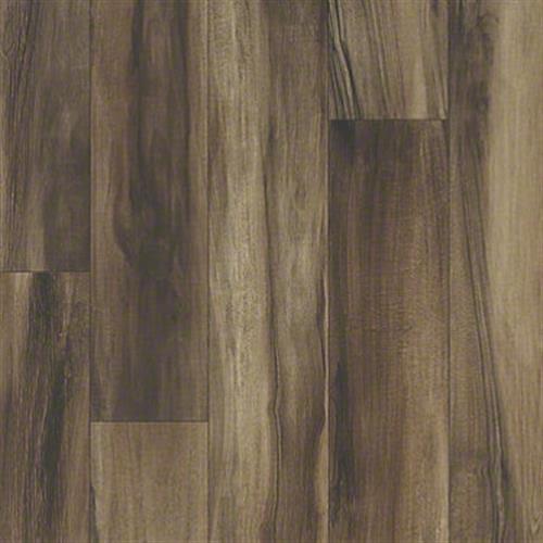 Argos in Arcadia - Vinyl by Shaw Flooring