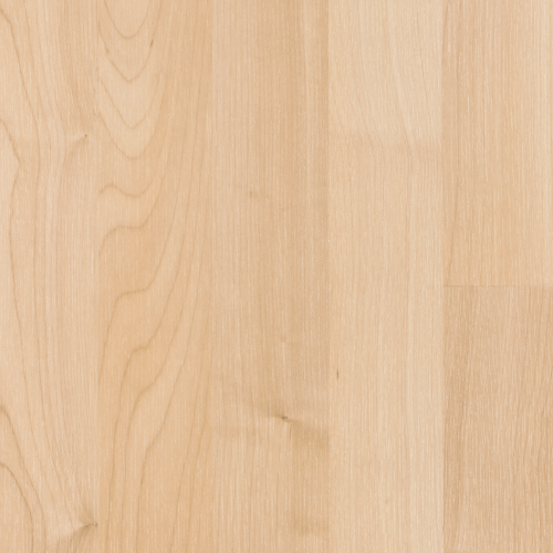Carnivalle Plus in Northern Maple - Laminate by Mohawk Flooring