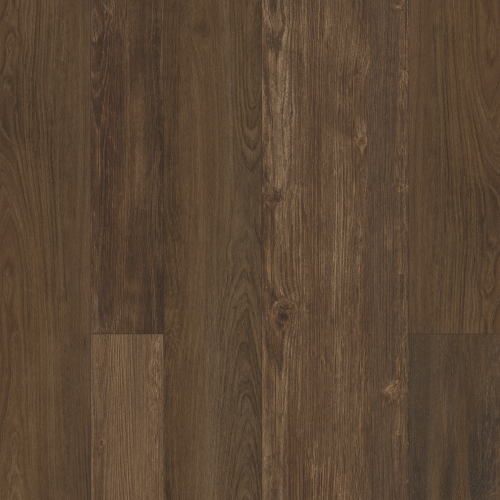 Perfect Manner in Death By Chocolate - Vinyl by Mohawk Flooring