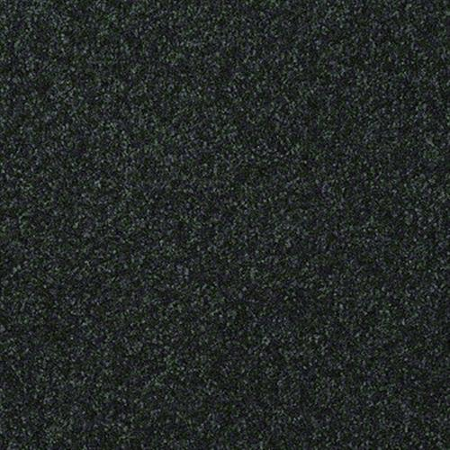 Passageway III 12 in Emerald - Carpet by Shaw Flooring