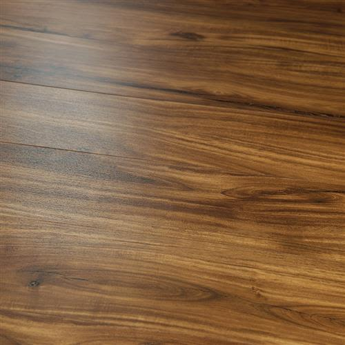 20 Mil Collection in Caceres Acacia - Vinyl by Hallmark Floors
