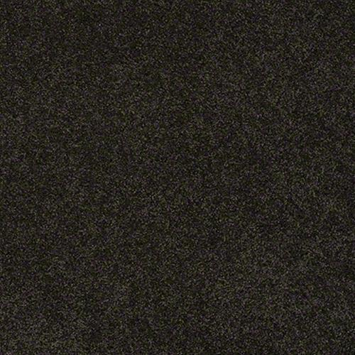 Lexi in Bristol - Carpet by Shaw Flooring