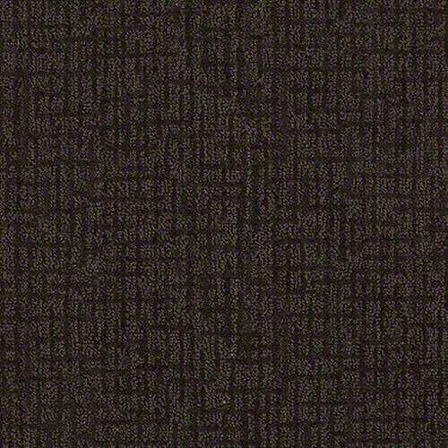 Mystic Charm in Dark Coffee - Carpet by Shaw Flooring