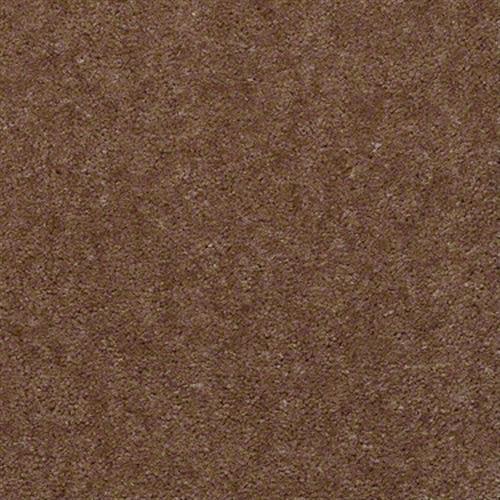 Bandit in Kidskin - Carpet by Shaw Flooring