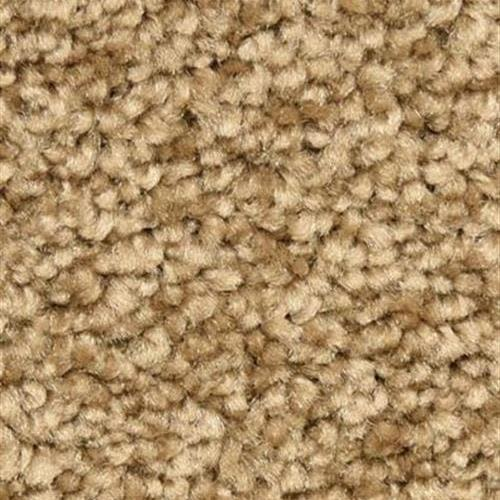 Solero in Almond - Carpet by The Dixie Group