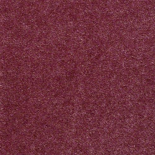 Hawkeye II in Blossom - Carpet by Shaw Flooring