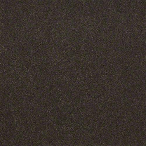 Emphatic II 30 in Brocade - Carpet by Shaw Flooring