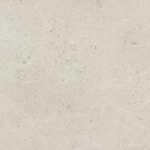 Dignitary in Luminary White 12x24 - Tile by Daltile