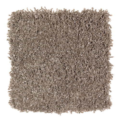 Pleasing Nature in Ashwood - Carpet by Mohawk Flooring