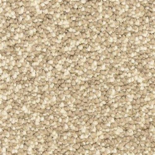 Spirit in Putty - Carpet by The Dixie Group