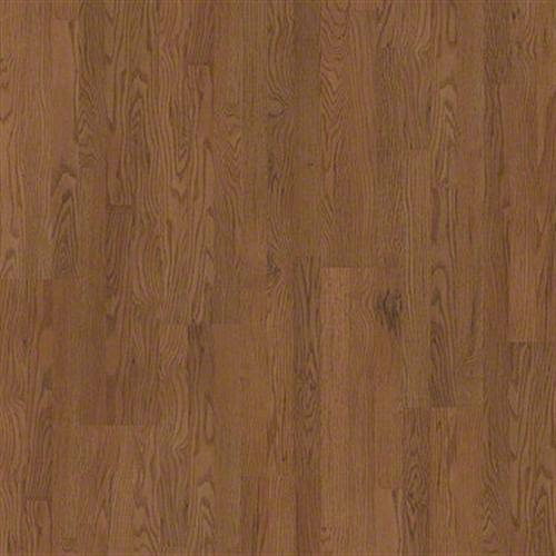 Natural Values Collection in Canyonlands Oak - Laminate by Shaw Flooring