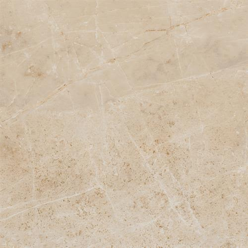 Roman Empire Collection in Caesar   12x24 - Tile by Chesapeake Flooring