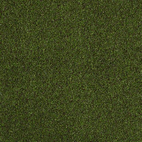 Cabana (t) in Trail MIX - Carpet by Shaw Flooring